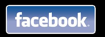 Facebook de tu Diario