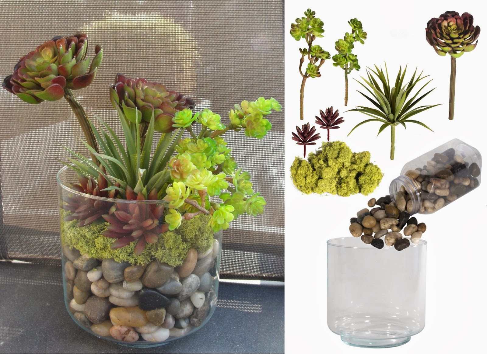 Terrarium idea March 2014