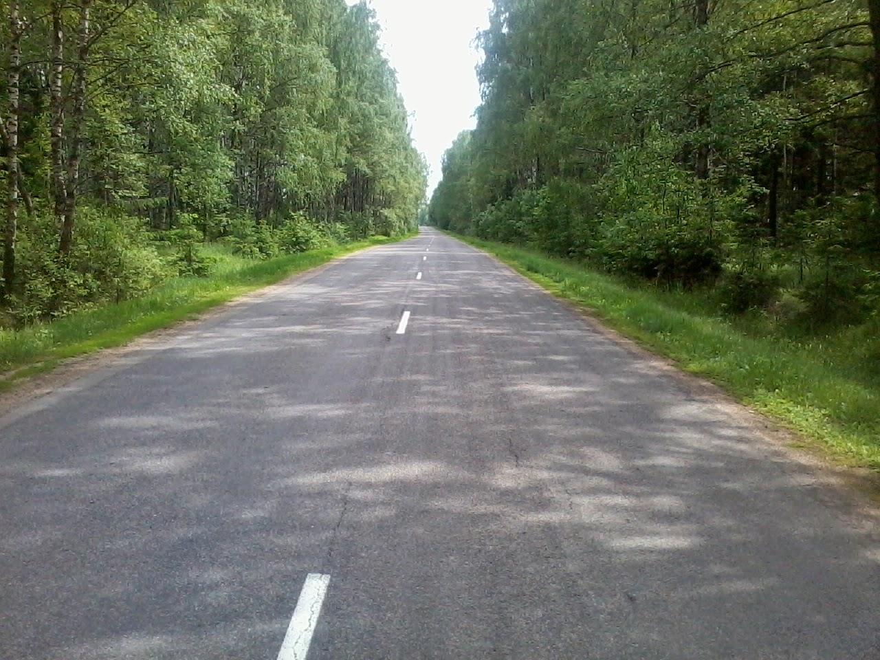 Велопробег Горки – Дрибин – Трилесино – Рясно – Дрибин – Горки.