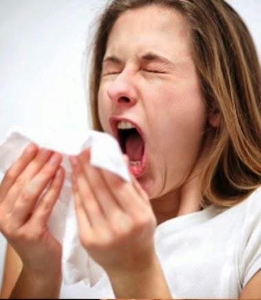 Cara Mengatasi Bersin Bersin dengan Propolis