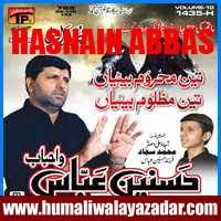 http://ishqehaider.blogspot.com/2013/11/hasnain-abbas-nohay-2014.html