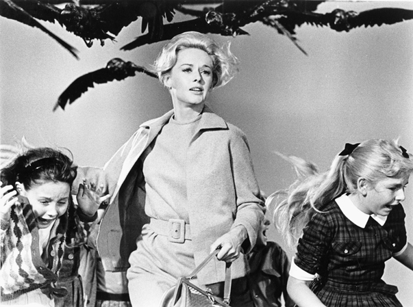 Crítica de 'Los pájaros', de Alfred Hitchcock The Birds Review