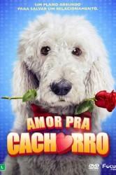 Amor Pra Cachorro – Dublado (2014)