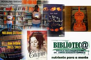 Melhor leitor 2012/2013