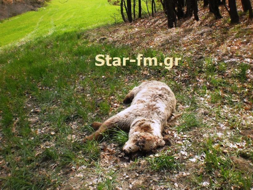 http://1.bp.blogspot.com/-u5vOuAVJv5I/UVRYJQqebGI/AAAAAAABy8Q/4AyE-4tBJrM/s1600/P3284464.JPG