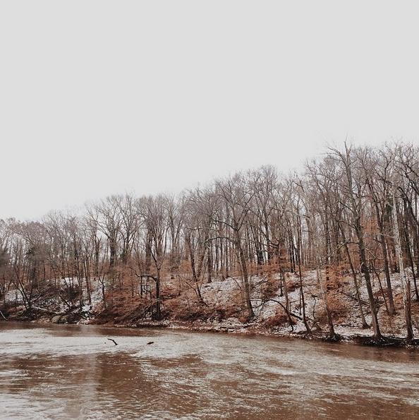 Tyler, State, Park, Bucks, County, Hiking,