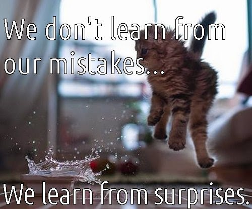 we don't learn from our mistakes, surprises.