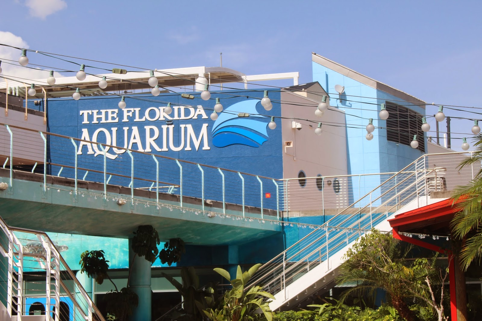Discounts average $9 off with a The Florida Aquarium promo code or coupon. 30 The Florida Aquarium coupons now on RetailMeNot.