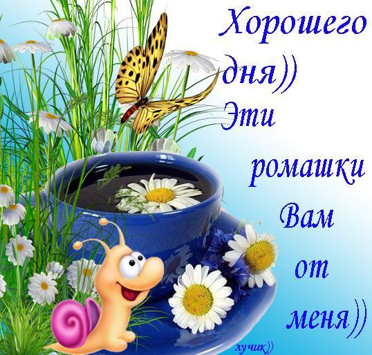 http://1.bp.blogspot.com/-u784O_g6f4k/T5M4LONOQ-I/AAAAAAAADqM/0aD-9pSahyk/s1600/b9f556141ef4135fd1399e4437a71d04.jpg
