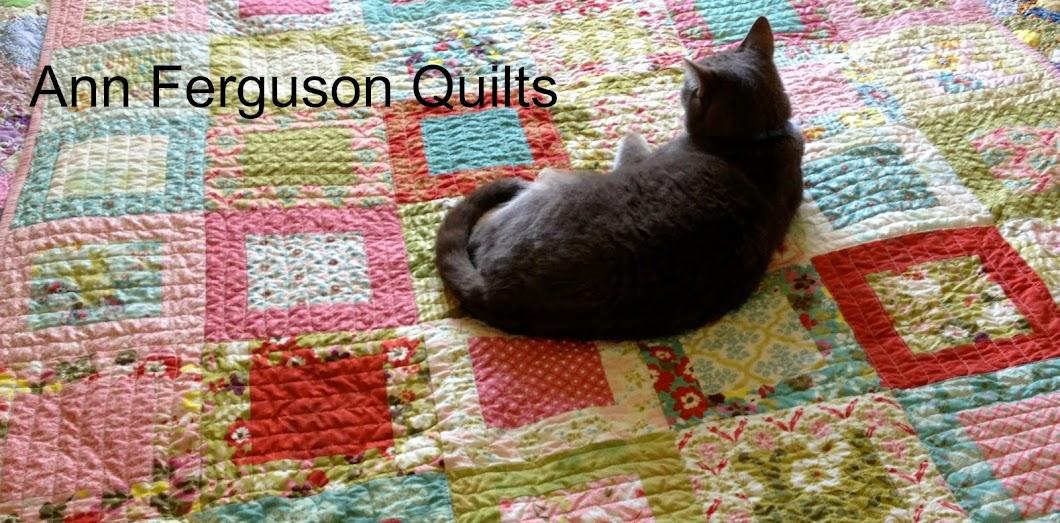 Ann Ferguson Quilts