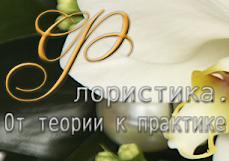 Мой второй блог