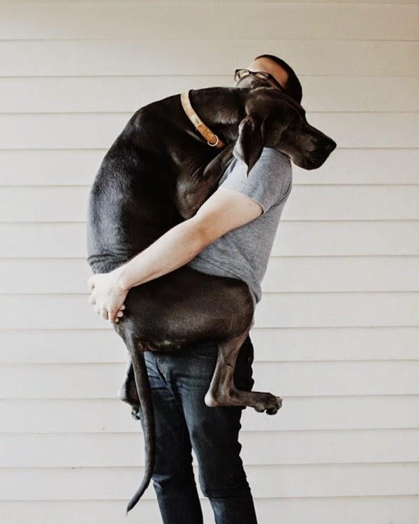 El poder de un abrazo