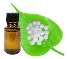 Camphor Oil - Its Essential Aspects