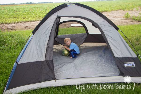 amelia bedelia goes camping pdf