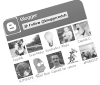 twitter followers fan widget