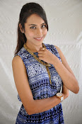 Khenisha Chandran at Jaganatakam press meet-thumbnail-12