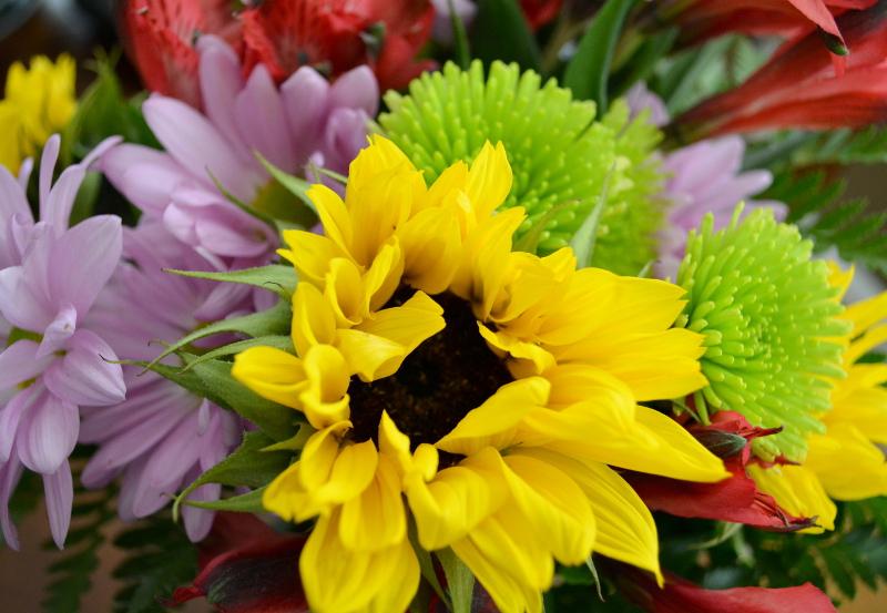 cozy birdhouse | sunflower arrangement