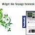 Thêm widget like fanpage ẩn cho blogspot