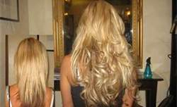 Josephines day spa salon platinum seamless hair extensionsa platinum seamless hair extensions can be worn from 2 to 3 months on most types of hair by using the recommended sulfate free aveda products and by adhering pmusecretfo Images
