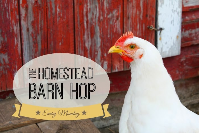 http://newlifeonahomestead.com/2014/04/mondays-homestead-barn-hop-156/