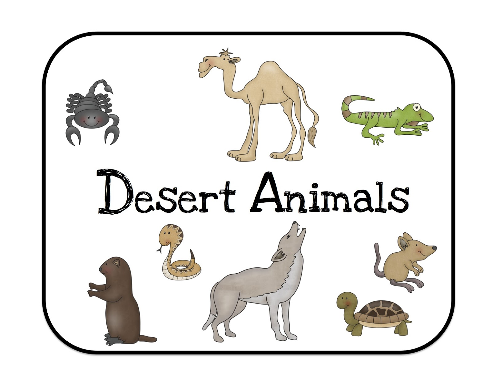 Images of Animals In The Desert  SC