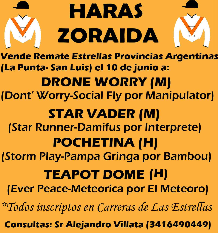 HS ZORAIDA LA PUNTA