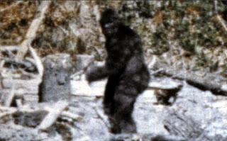 Bigfoot-kaki-besar