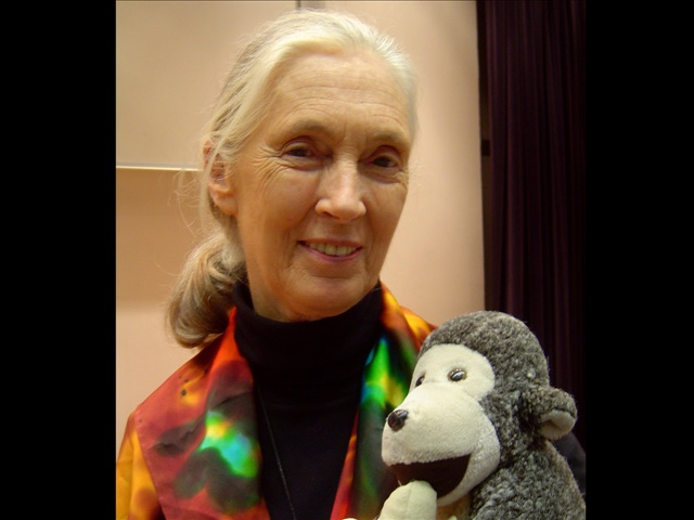 - Jane Goodall--close