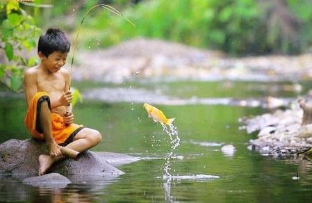 Tuổi thơ câu cá