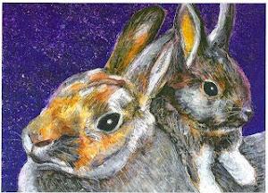 Rabbits at night pic