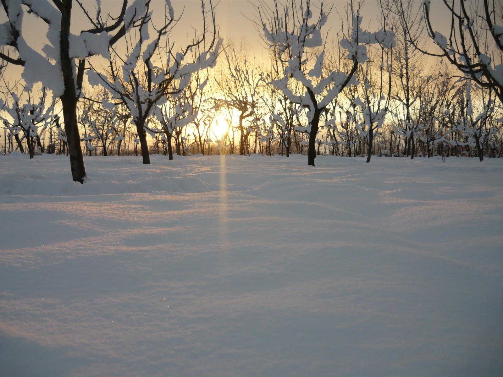 sunset in kashmir during snow wallpaper | hd kashmir wallpapers