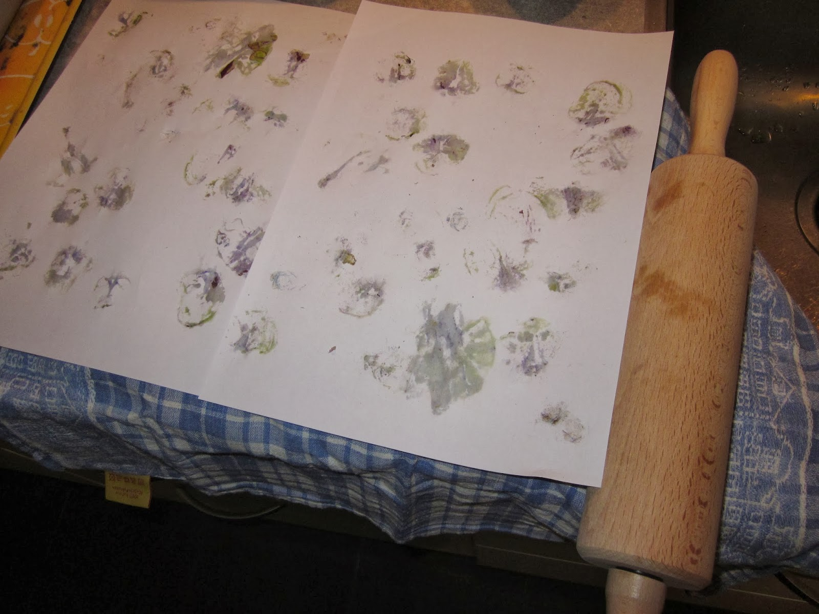 Huis tuin en keuken: m: paarse spruitjes, van begin tot eind