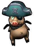 Pirate101 Best Grizzly Beast Gear / Items - Hoggle Pet