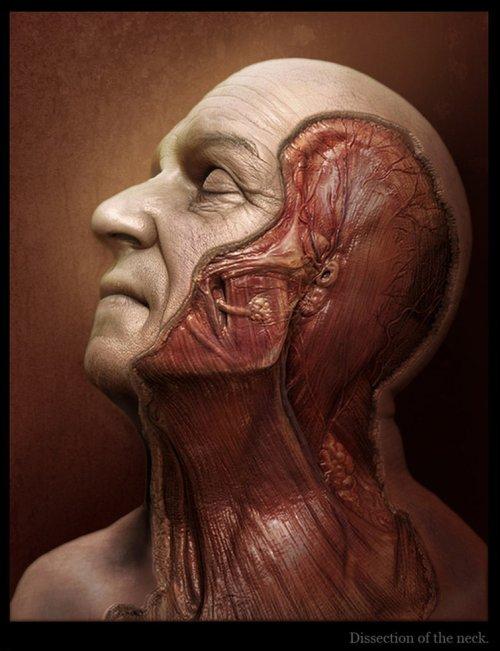 Tsvetomir Georgiev ilustrações artes conceituais e modelos 3D filmes Pescoço