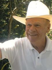 José Villanueva Díaz