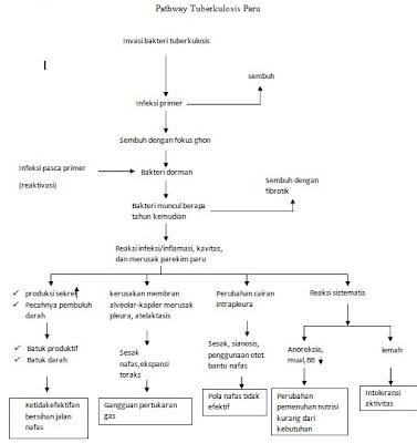 Pathway Tuberculosis Paru