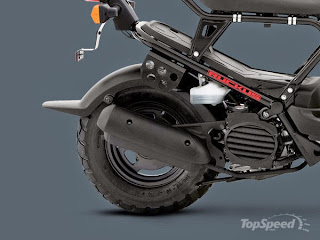 Honda Ruckus - Without Cover