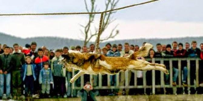 tradisi kejam terhadap hewan