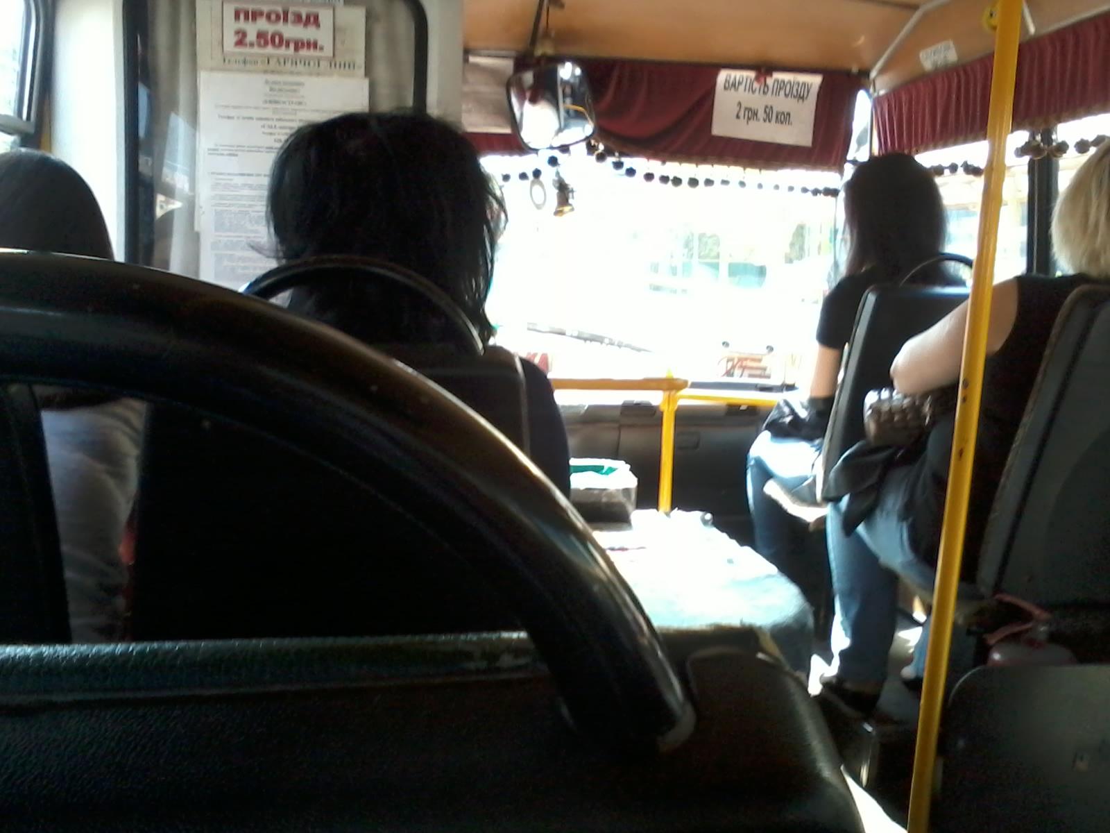 Автобусе Trogaet