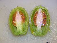 tomatoes ripen from inside out
