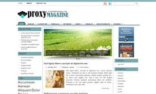 Proxy WordPress Theme