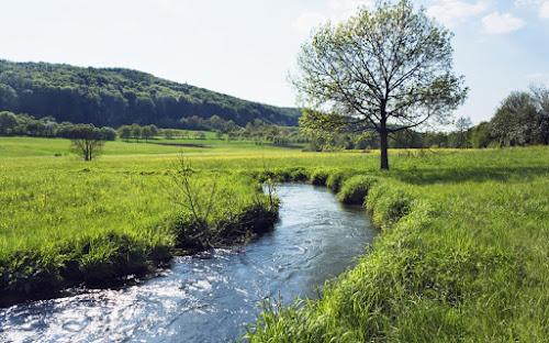 Um novo rio que corre