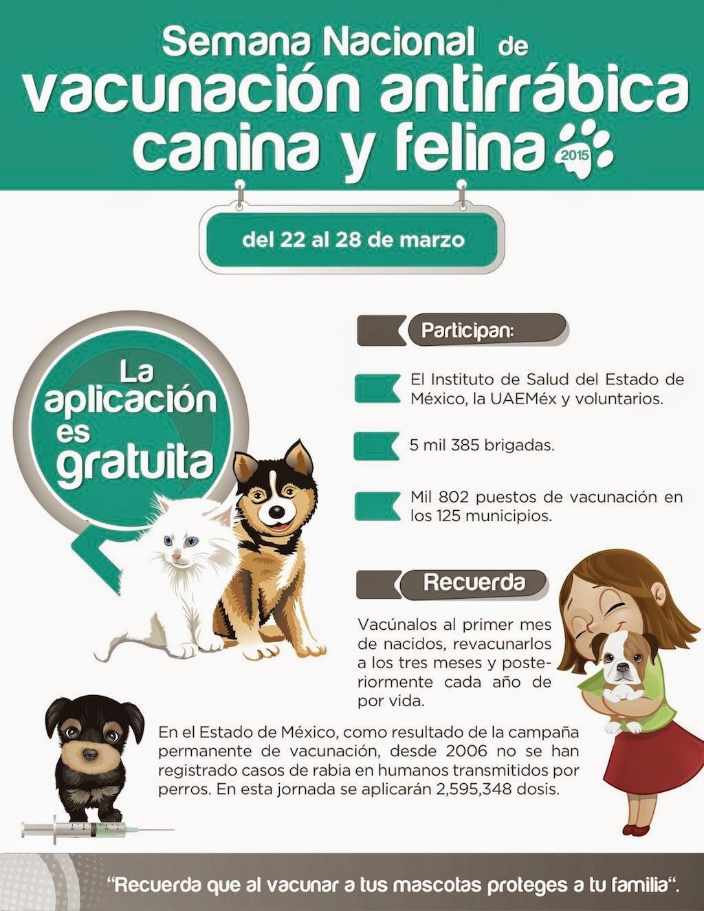 ... : Semana Nacional de Vacunación Antirrábica Canina y Felina 2015