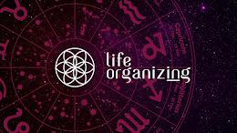 CONSULTORIA LIFE ORGANIZING