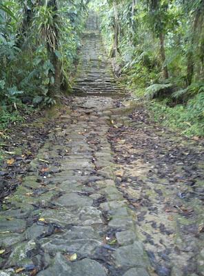Escalera hacia la Ciudad Perdida (Foto Jorge Bela)