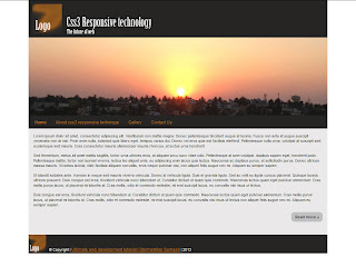 CSS3 mobile responsive website - We design and development