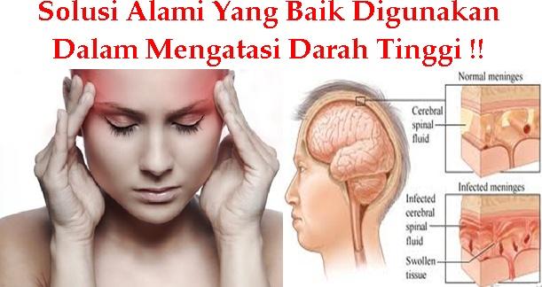 Cara Ampuh Mengatasi Penyakit Radang Otak Pada Orang Dewasa Ekstrak Alami