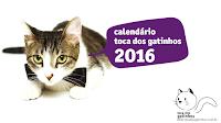 Calendário Toca dos Gatinhos 2016