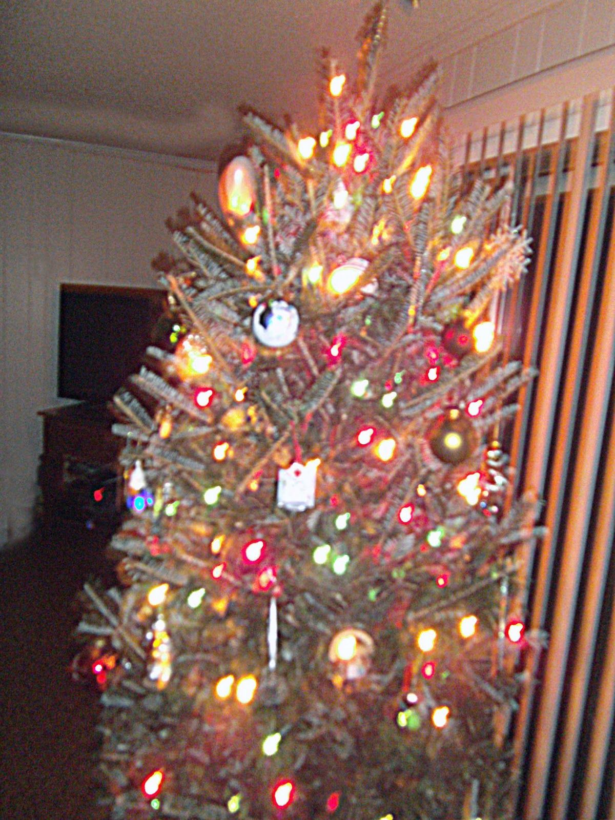 No Title Necessary: Oh Christmas Tree, O Christmas Tree...how lovely are thy branches