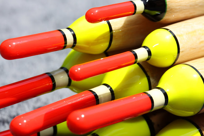 Yellow and Red Tip Avons